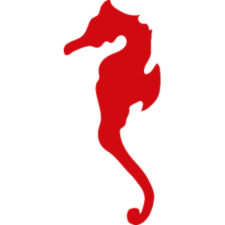 cavalluccio-marino_rosso